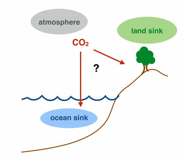 Atmospheric Carbon and Where Does It All Go?